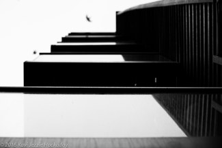 Apartments and Bird