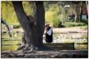 Fiddler in the Park
