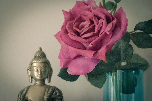 Buddha and Flower