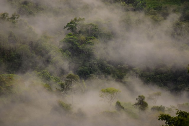 Late rains bring the fog in Puriscal