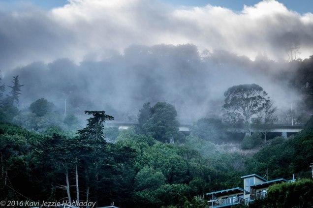 fog-rolling-in-2