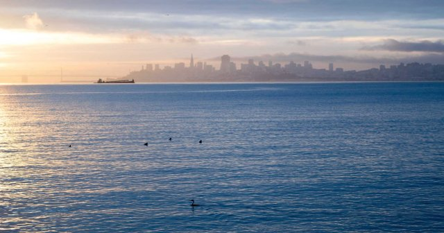 san-francisco-bay-at-dawn-copy