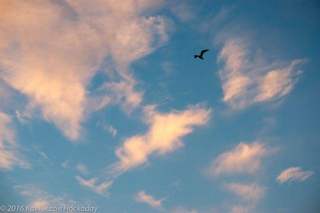 the-ecstatic-sky-3