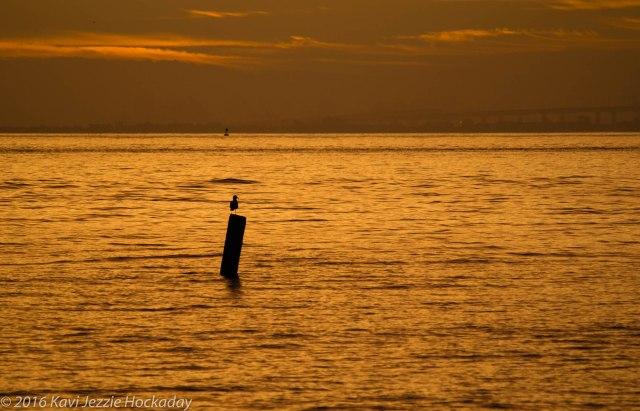 saturday-sunrise-4