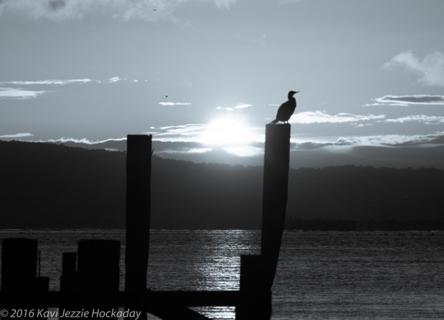 sunrise-sausalito-black-and-white-2