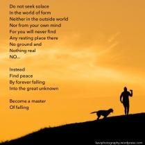 do not seek solace