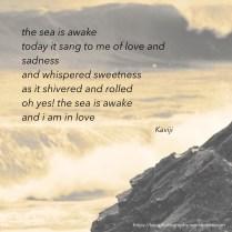 the sea is awake