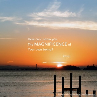 your magnificence